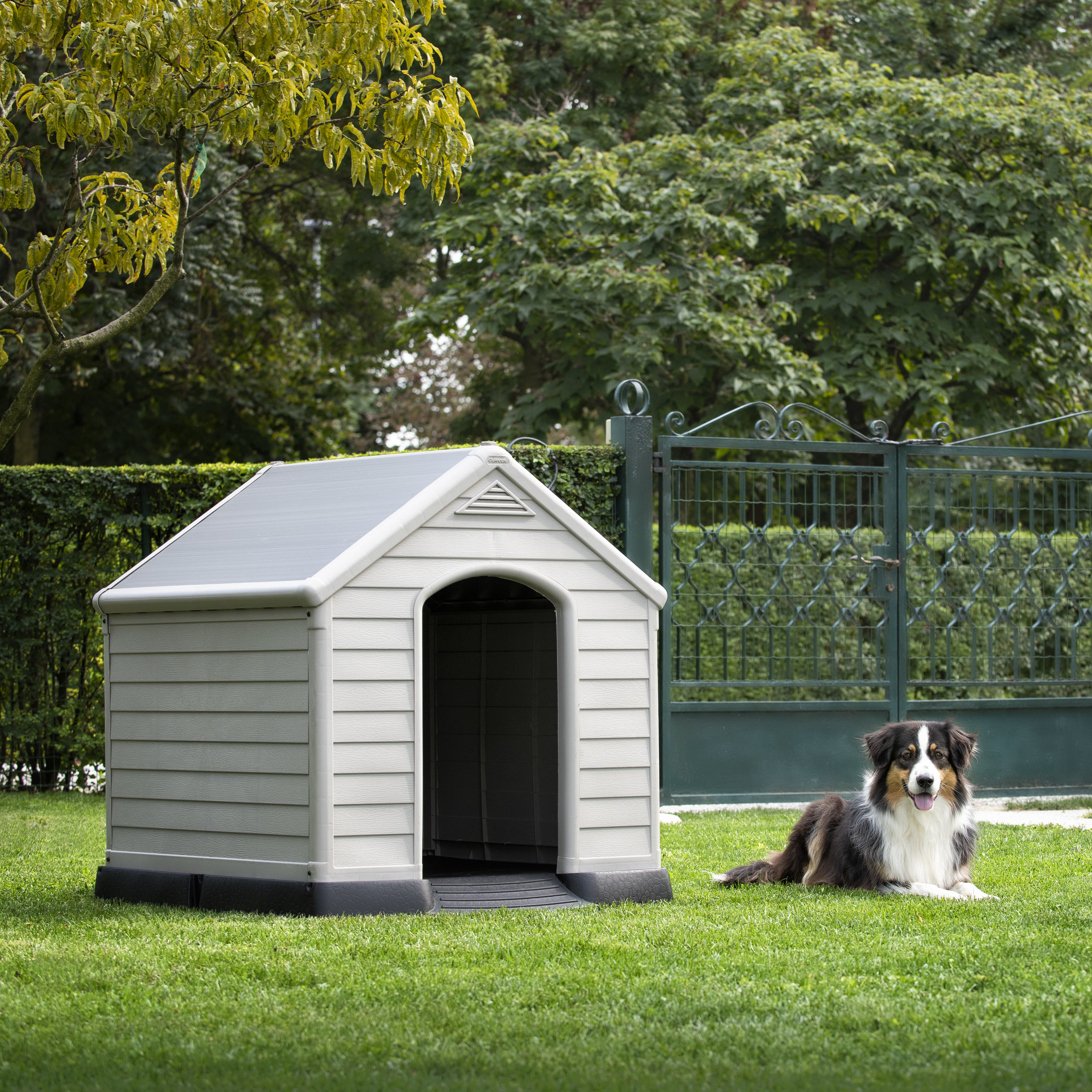 DOG HOUSE with dog.jpg