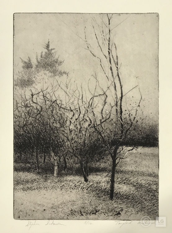 Tangled Orchard (edition of 12)