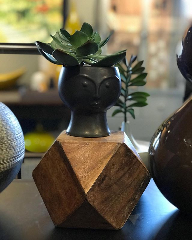 Cold weather is coming so now is the time to figure out cozy homes for your plants, we can help in the boutique! ⠀ https://buff.ly/2GVI5WE⠀ .⠀ .⠀ .⠀ .⠀ .⠀ .⠀ .⠀ .⠀ #planter #plantersofinstagram #plantsofinstagram #pottery #handmadeceramics  #claylife #ceramics  #functionalpottery #homedecor #instaceramics  #makersgonnamake  #potteryforall #pottersofinstagram  #makermade  #studioceramics #houseplants #fakeplants #succulents #planthome #plantholder #plantstand #lafontseeboutique #grandrapids #plantlove #headplanter