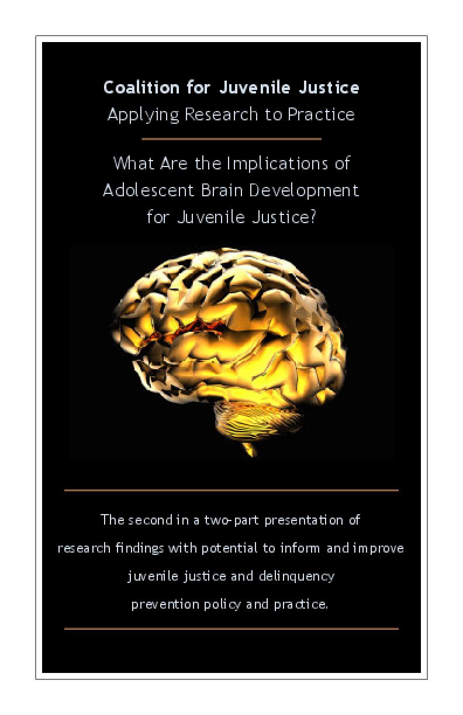adolescent_brain_development.png