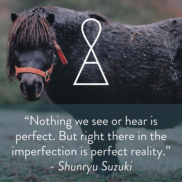 Perfect reality. I love it 💕 and this cutie patootie🐴 Listen to Suzuki!!! . . .  #airapy #philly  #phillytherapy #phillyphilly #walkandtalktherapy #whyilovephilly #phillycounseling #lpc #lcsw #mentalhealthaccess #mentalhealthawareness #mentalhealth #behavioralhealth #accessiblehealthcare #wellness #affordablehealthcare #accessibility #behavioralhealthawareness #therapy #counseling #counselingpsychology #counselorlife #counselling #counsellor #counselor #therapist #therapists #therapists