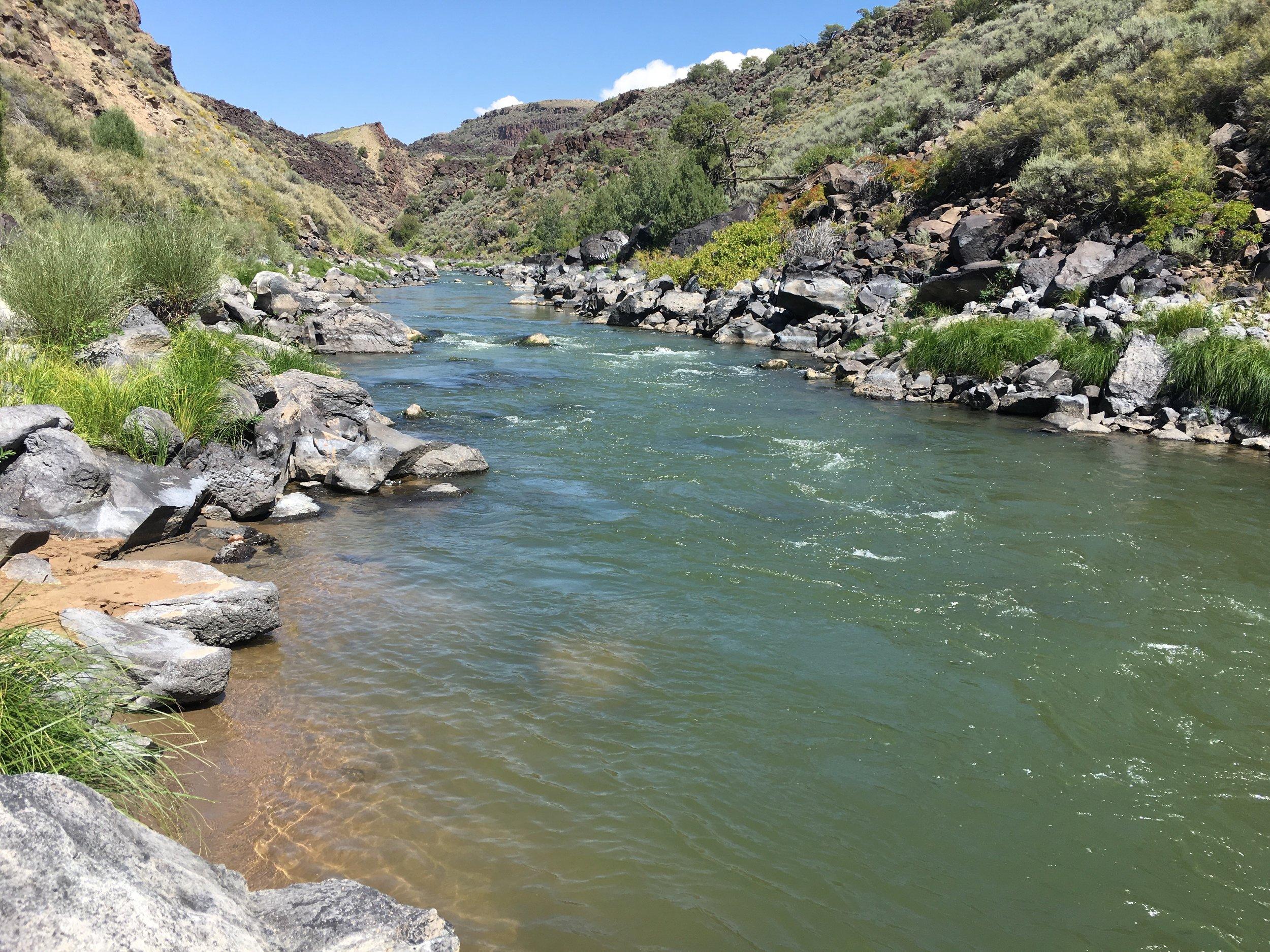 Rio Grande in the Lower Taos Box