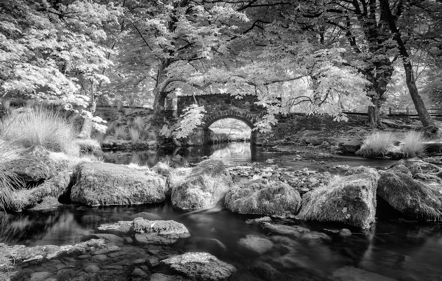 Minffodd Bridge Paul Fowles Photography, Aberdovey Aberdyfi,.jpg