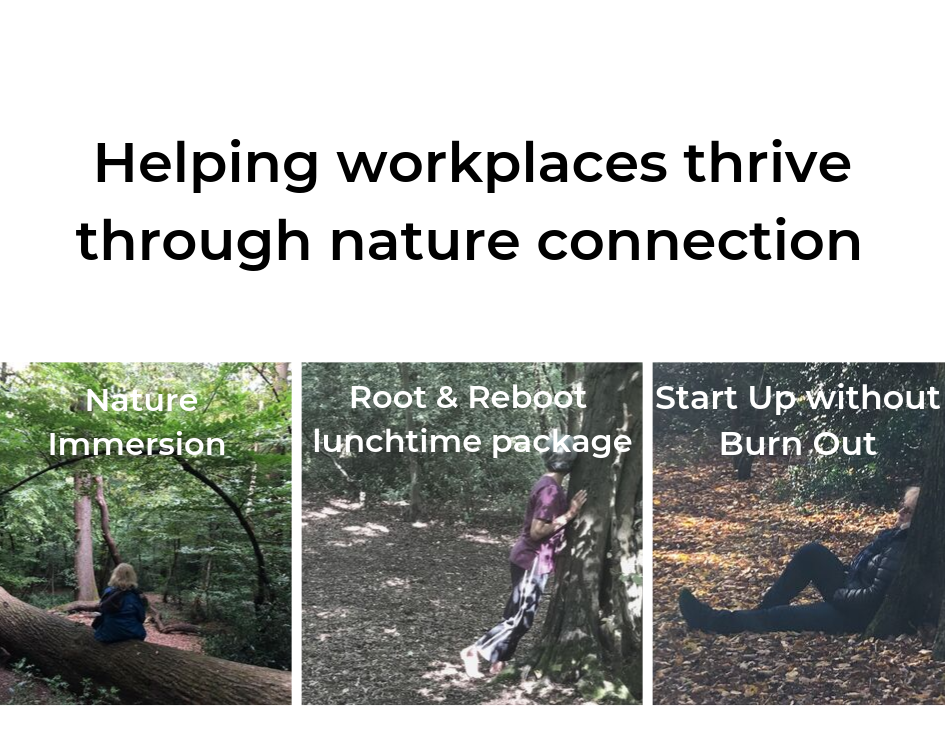 Helping workplaces thrive.png