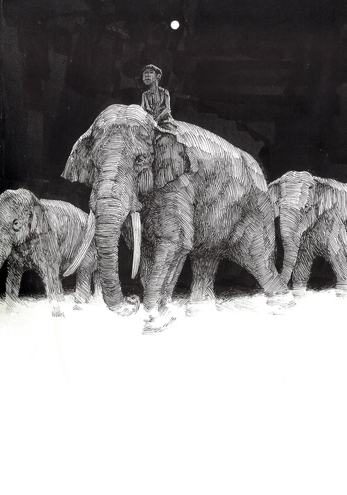 Toomai $400 Ink drawing on 17x28cm paper