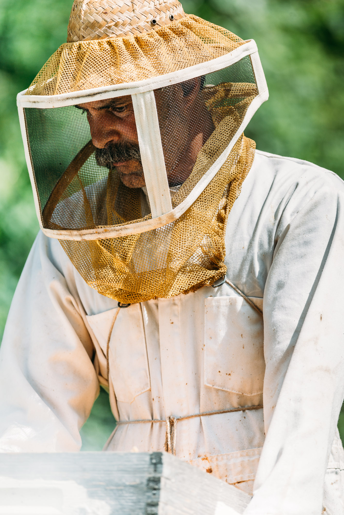 Bee Keeper Tom