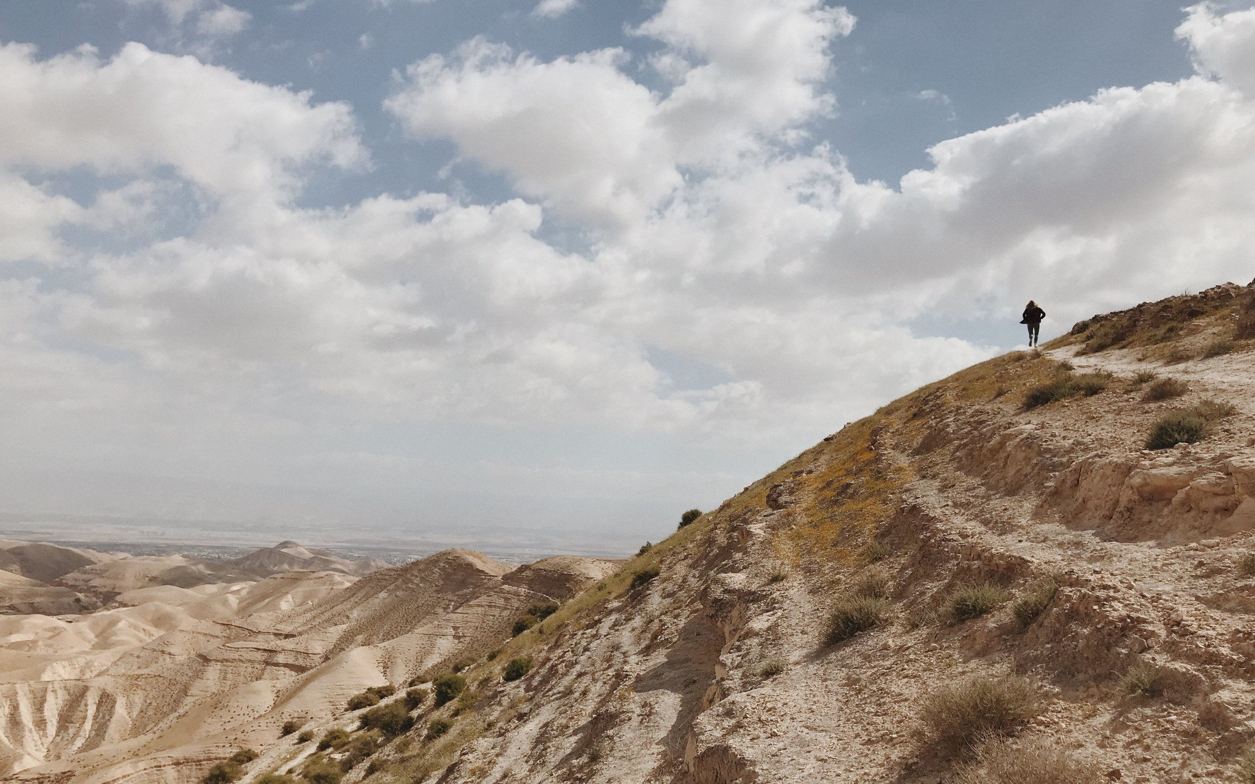 cara-bowen-timberline-path