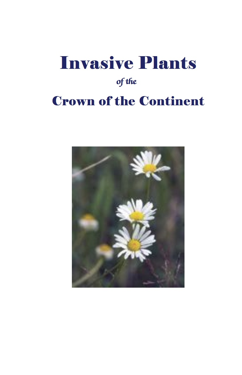 Invasive Plants of the Crown of the Continent - Use this guide to help you identify invasive plants in the Crown of the Continent, discern them from native plant look-alikes, learn about their reproduction and dispersal strategies, and prevent them from overtaking native plant communities.