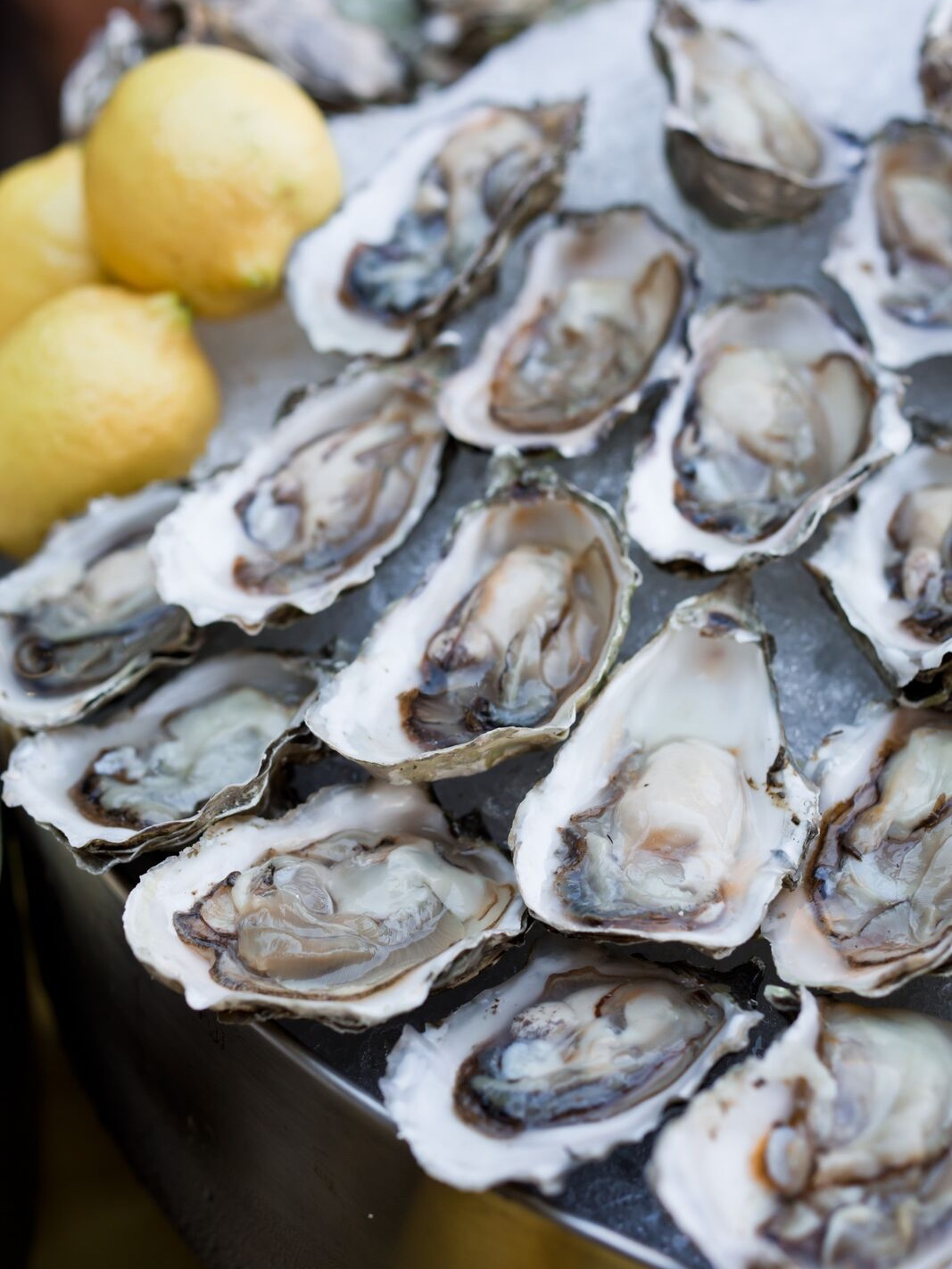 Oysters On Ice - A classic!Served with lemon, hot sauce, shallot & champagne vinegar mignonette, or straight up