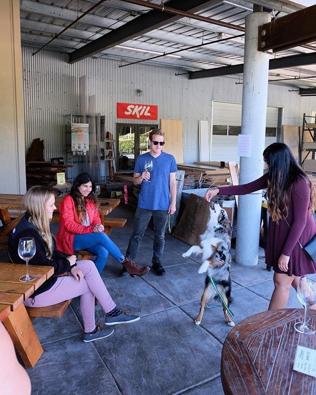 Bring the whole gang and hangout on the patio! 🐕🍷 - - - - - #arcata #humboldt #eureka #bluelake #humboldtcounty
