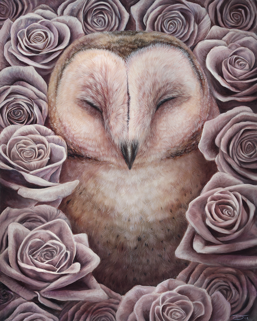 pretty barn owl with roses