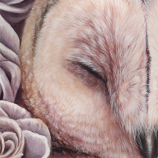 pretty pastel barn owl art painting