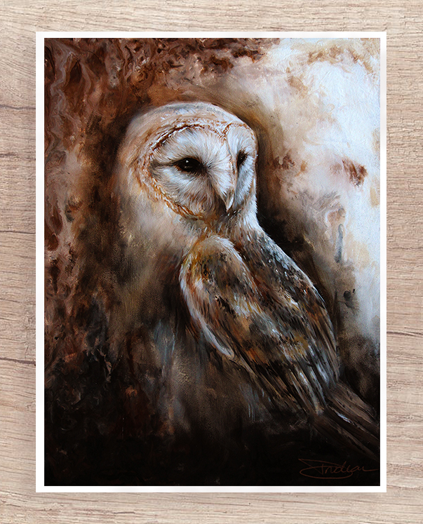 Calming barn owl painting