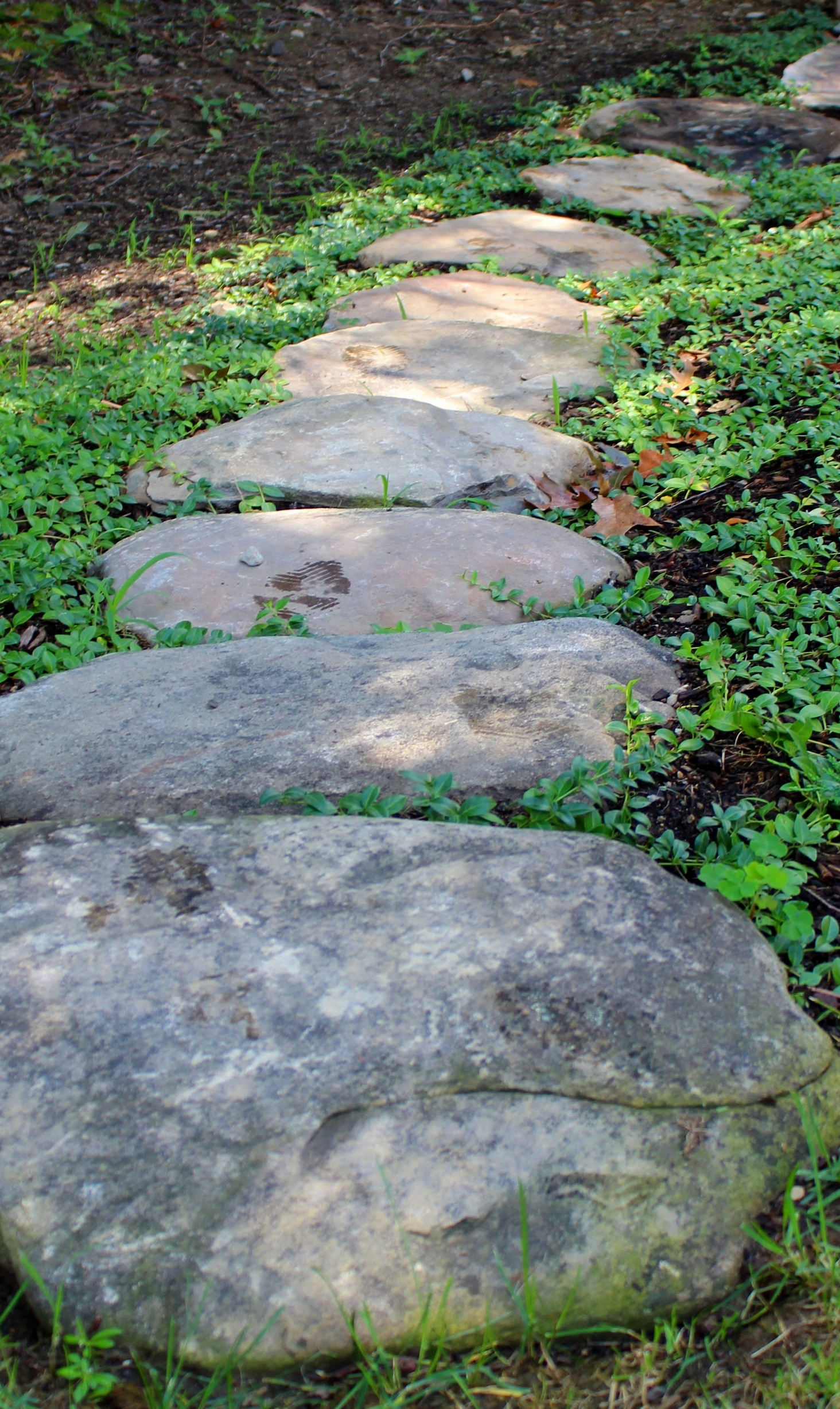 field stone stepping stones
