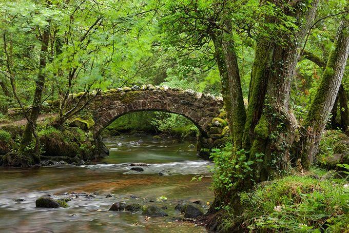 river bovey.jpg