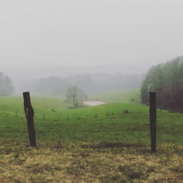A view worth getting out of the car for during a ride in the driving rain along the Blue Ridge Parkway.  #countryroad  #blueridgemountains #blueridgeparkway #meadowsofdan #downpour #iwassoaked