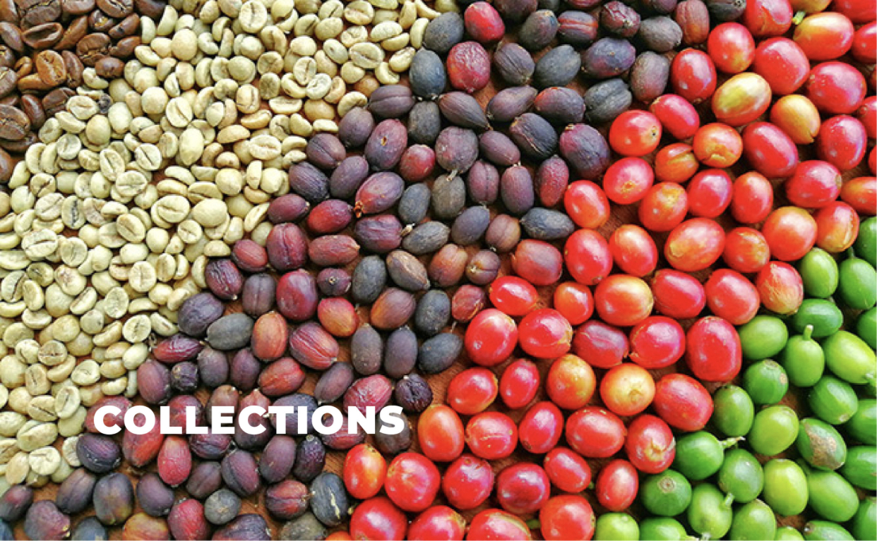 Choose from seven different coffee collections: African, Central American, Indonesian, Peaberry, Premium Island, South American, and for those that want to try something from all three regions the World Traveler Collection!