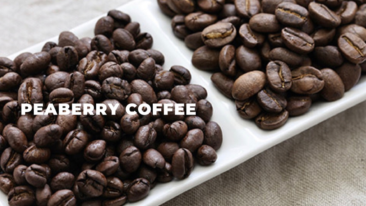 Peaberry Coffee - Peaberry coffee by its very nature is rare as only 5% of all coffee beans harvested are in this form! A rare treat indeed and not always available. Try some while you can!