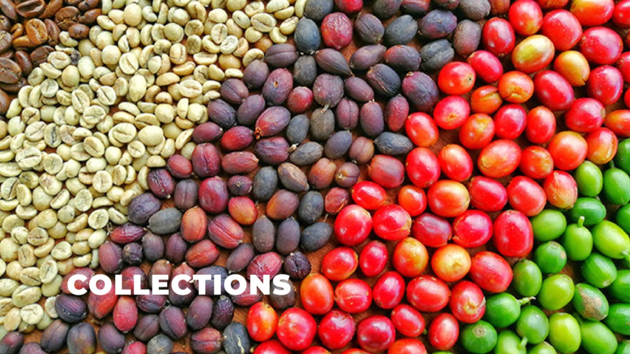 Coffee Collections - Can't decide what to get? Try a collection from: Africa, Central America, Indonesia, Peaberry, Exotic Peaberry, South America and our World Traveler Collection!