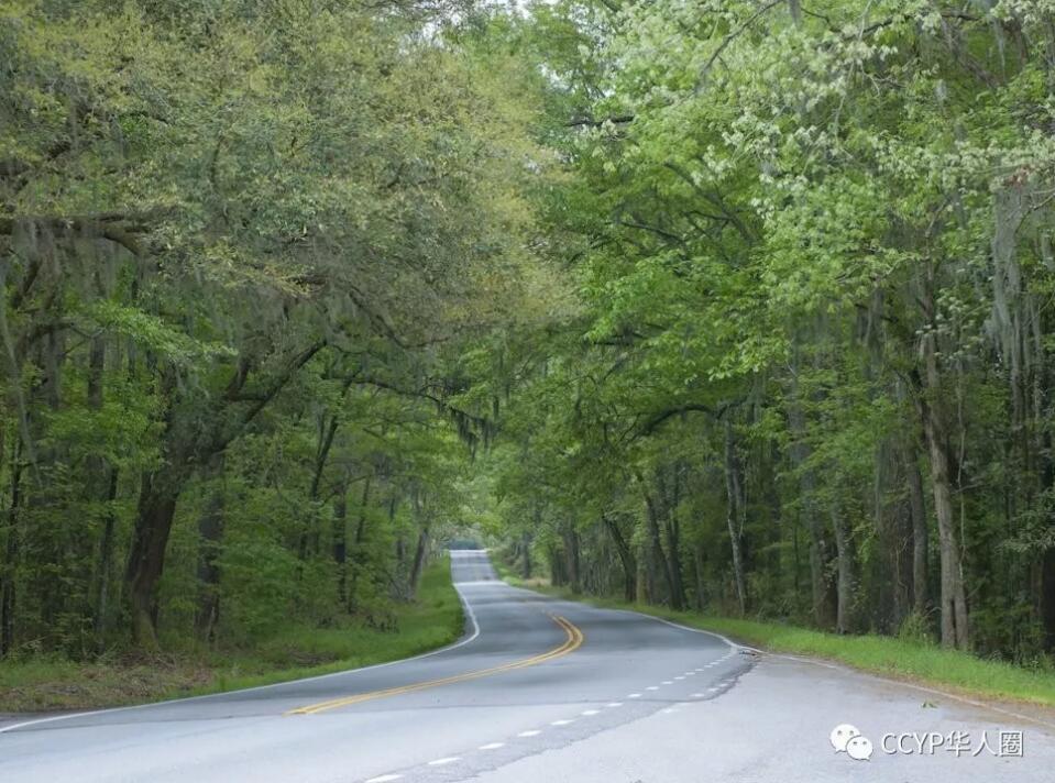 公路11.jpg
