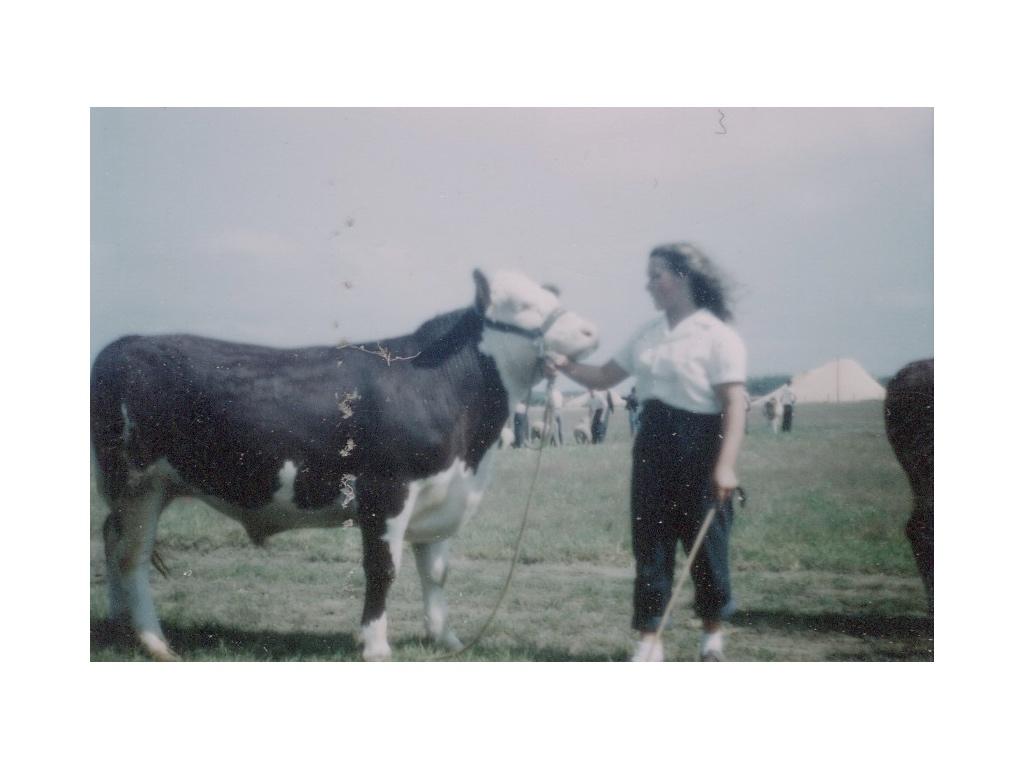 002. Cattle.jpg