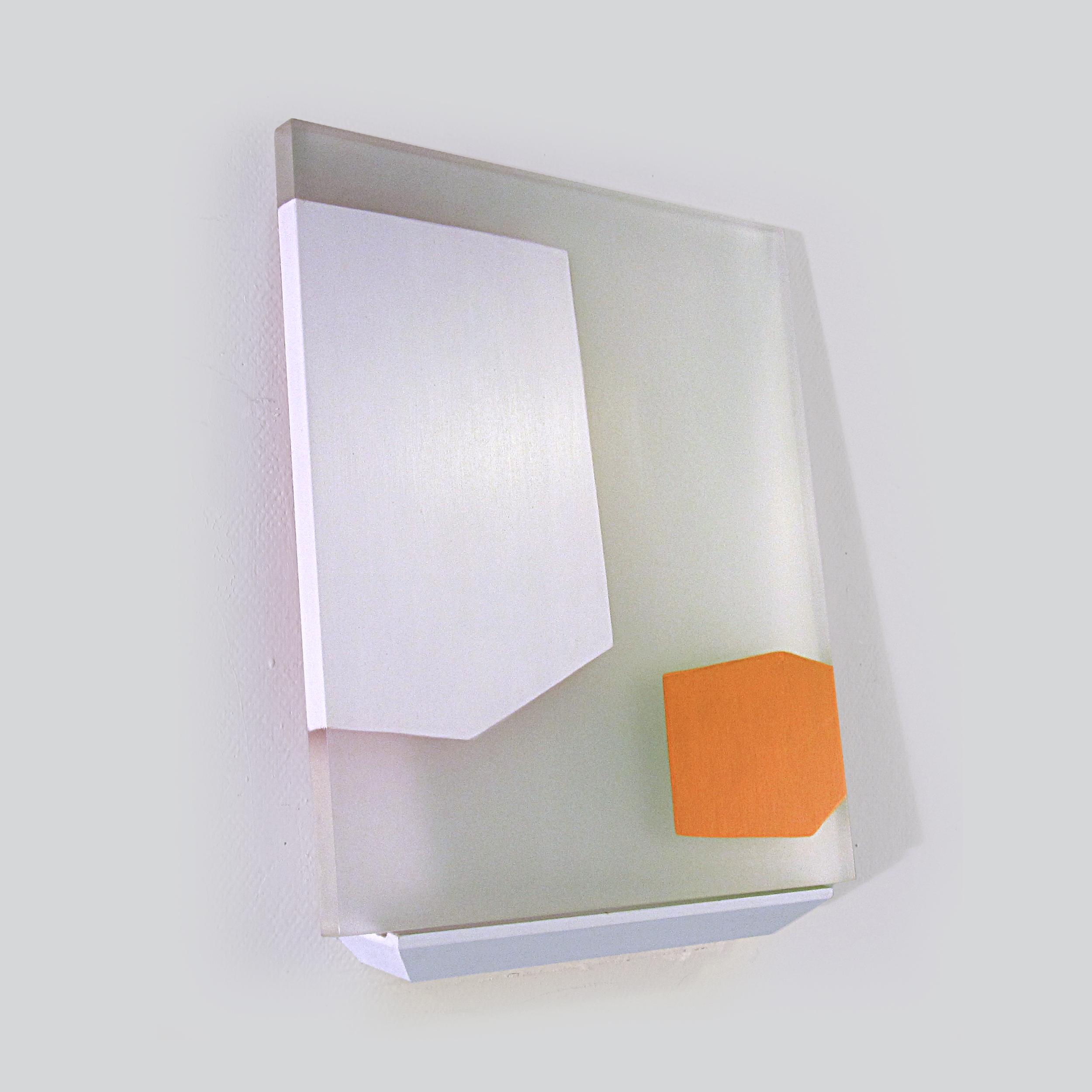 Ruse of Transparency 14     2010     acrylic on plexiglass, shelf     17 x 14 inches