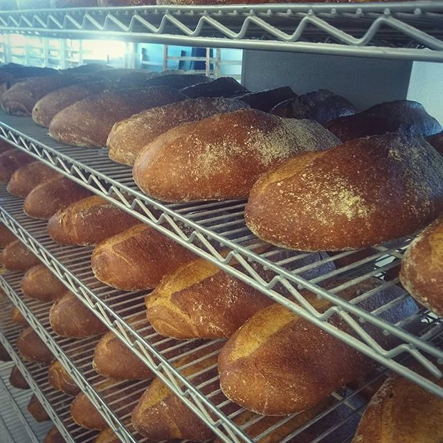 Stacks on stacks.  Fresh milled whole wheat loaves. Shipping off to the #Philly @sweetgreen locations.  #realfood #bread #bakerlife #baker #hardwork