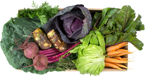 Vegetais pequena - R$ 45,85 por cesta