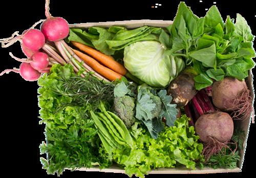 Vegetais grande - R$ 79,80 por cesta