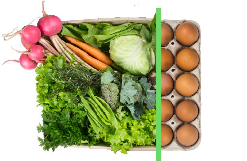 Vegetais + ovos - BENEFÍCIOS INCLUSOS> Sua cesta personalizada> + 1 dúzia de ovos orgânicos> Apenas + R$ 14,99 por entrega