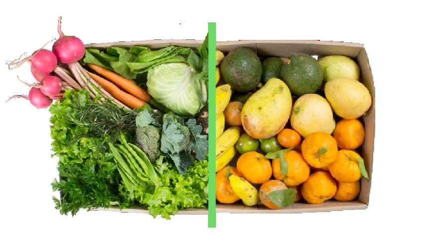 Vegetais + frutas - BENEFÍCIOS INCLUSOS> Sua cesta personalizada> + 1 cesta de frutas orgânicas> Apenas + R$ 79,99 por entrega