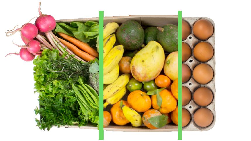 Vegetais + frutas + ovos - BENEFÍCIOS INCLUSOS> Sua cesta personalizada> + 1 cesta de frutas orgânicas> E também 1 dúzia de ovos orgânicos> Apenas + R$ 94,98 por entrega