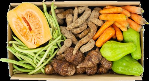 cesta-legumes-p.png