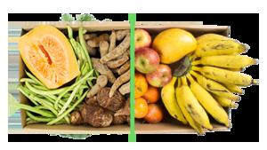 Legumes + frutas - BENEFÍCIOS INCLUSOS> Sua cesta personalizada> + 1 cesta de frutas orgânicas> Apenas + R$ 54,99 por entrega