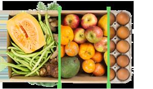 Legumes + frutas + ovos - BENEFÍCIOS INCLUSOS> Sua cesta personalizada> + 1 cesta de frutas orgânicas> E também 1 dúzia de ovos orgânicos> Apenas + R$ 69,98 por entrega