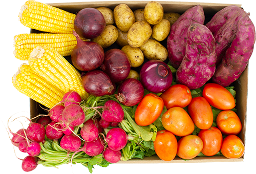 Cesta grande personalizada - R$ 105,99 por entrega incluindo 6 variedades com 2 porções cada, totalizando 12 itens (sem folhas)