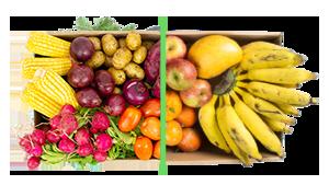 Legumes + frutas - BENEFÍCIOS INCLUSOS> Sua cesta personalizada> + 1 cesta de frutas orgânicas> Apenas + R$ 79,99 por entrega