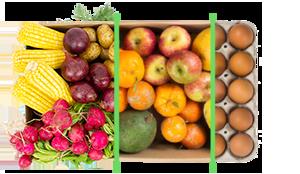 Legumes + frutas + ovos - BENEFÍCIOS INCLUSOS> Sua cesta personalizada> + 1 cesta de frutas orgânicas> E também 1 dúzia de ovos orgânicos> Apenas + R$ 94,98 por entrega