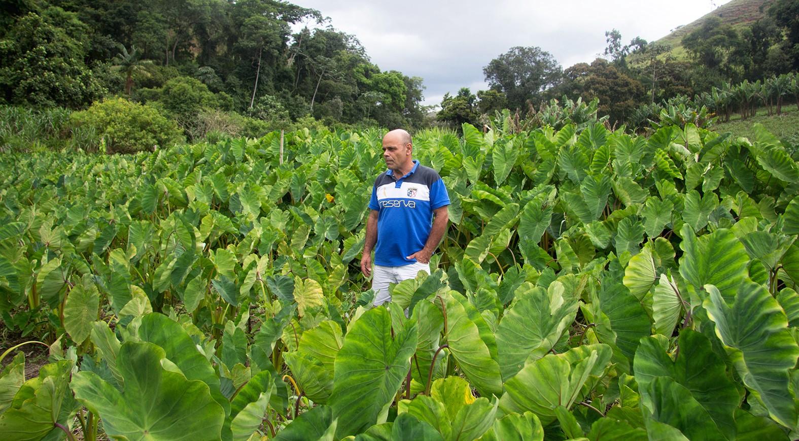 Uma homenagem à figura mais importante do nosso Clube: o produtor agrícola -
