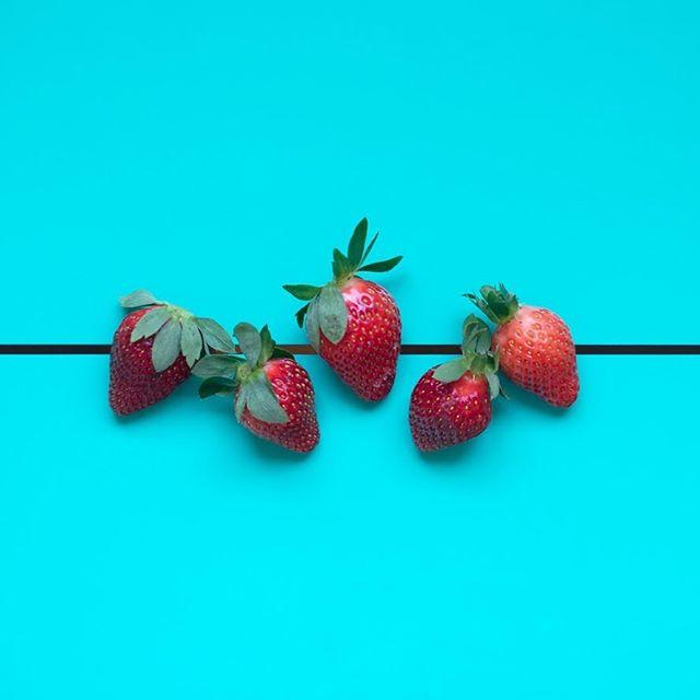 A maior estrela da estação chegou: Morangos orgânicos // nas cestas de frutas para assinar em todo o Rio e Niterói pelo @organomix e também na nossa gôndola da loja da Mosela, no @armazem_do_grao, em Petrópolis.  #VemProClube pra comer comida de verdade 💚 [📸 @rodrigocavassoni]  #organicoimporta #petropolismaisorganica