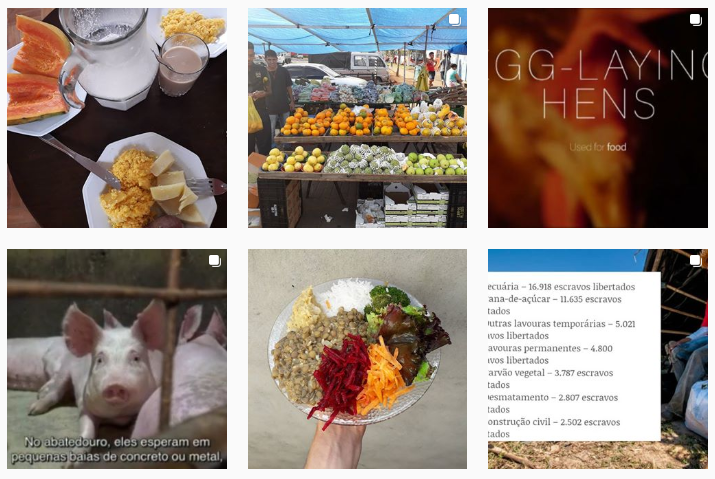 5-perfis-sobre-veganismo-para-seguir-no-instagram-vegano-periferico