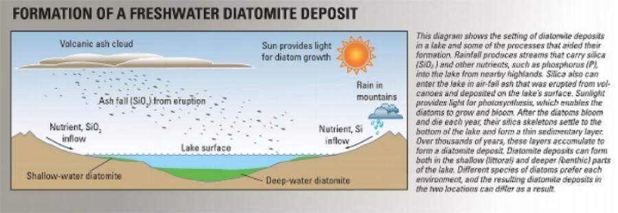 The natural process of DE