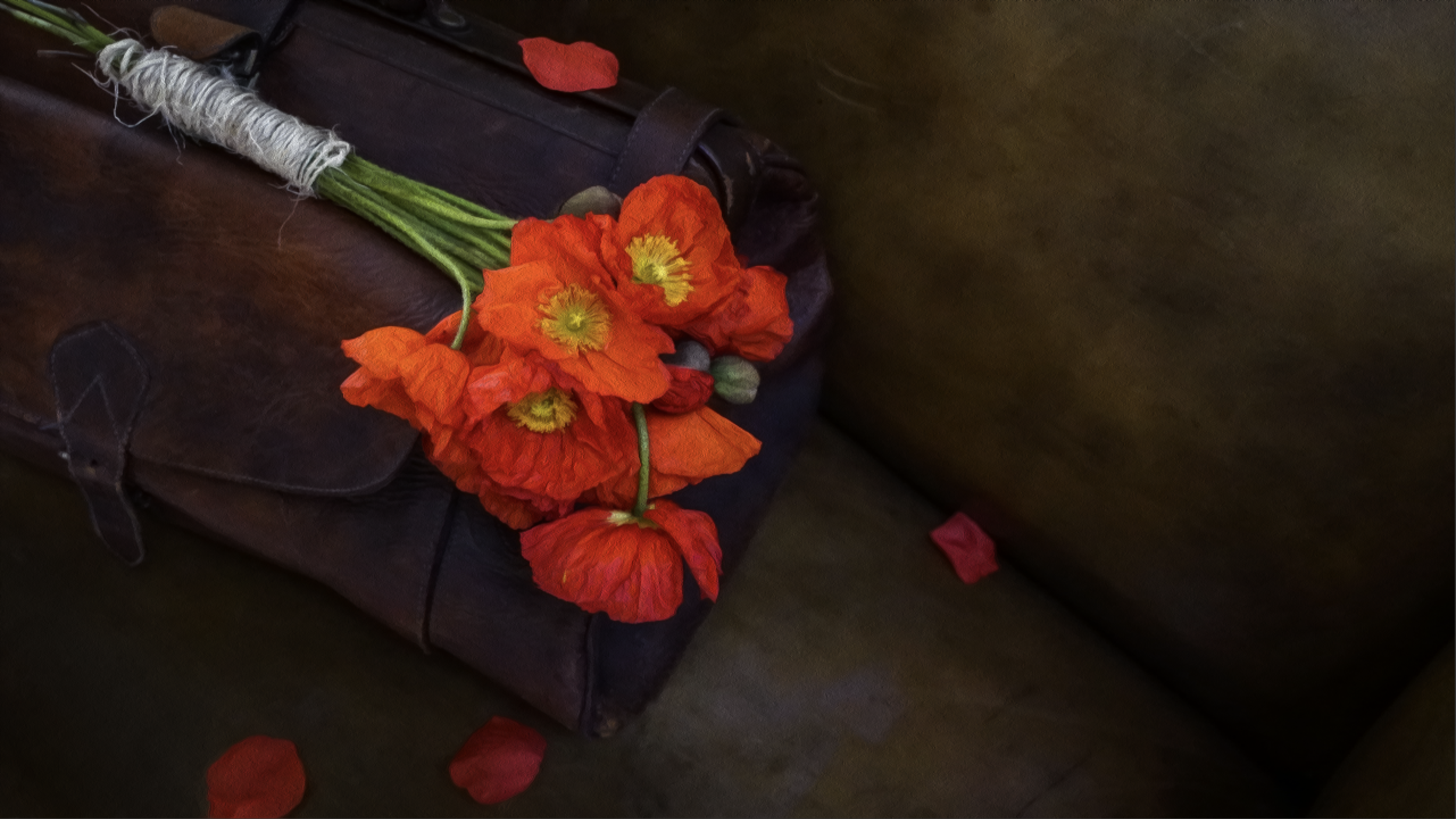 POPPIES 罌粟花 - While on a long-haul flight from Shanghai to New York, a despondent, American lawyer becomes seduced by the enchanting stories of a wise, Chinese woman seated beside him; unleashing feelings he had tried to bury deep inside.