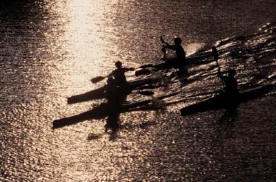 Manly Kayak Hire.jpg
