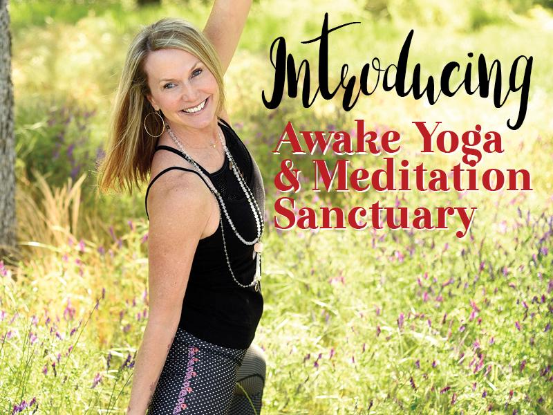 https://www.stylemg.com/2019/06/03/200949/introducing-awake-yoga-meditation-sanctuary-in-el-dorado-hills