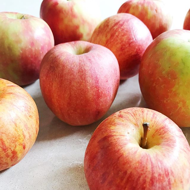 I always feel so much pride for our region when I smell, taste or even think about apples. What a gift it is to experience this ABUNDANCE every year at this time!! ✨  BUT WHAT DO I DO WITH ALL THE BEAUTIFUL, DELICIOUS APPLES!? ✨  @sue_petersen_nutrition has an answer for us TONIGHT from 6:30-7:30 pm at @thezealcenter! ✨  Learn how to make D E L I C I O U S dehydrated apples that keep through the winter AND take some home with you! Join us tonight!