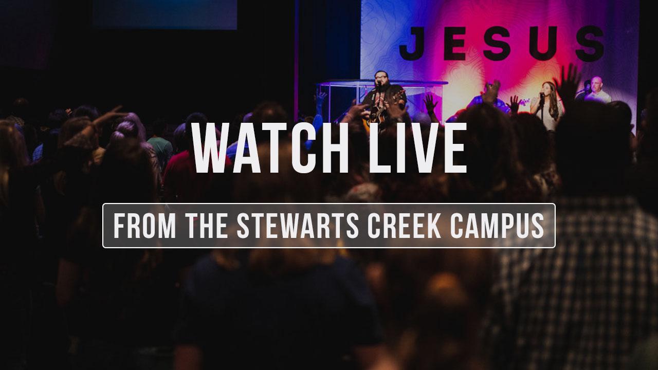 watch-live-creek.jpg