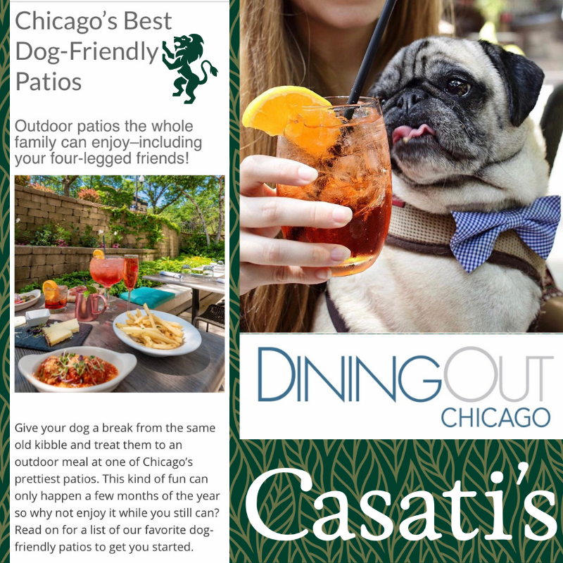 Dining out Chicago - Chicago's Best Dog-Friendly Patios.png