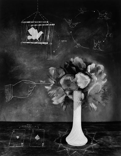 "Parlor Tricks,  Carol Golemboski, Silver print with drawing and photogram, 30"" x 25-3/4"", $1,800 (30% goes to Lighthouse's Fellowships)"