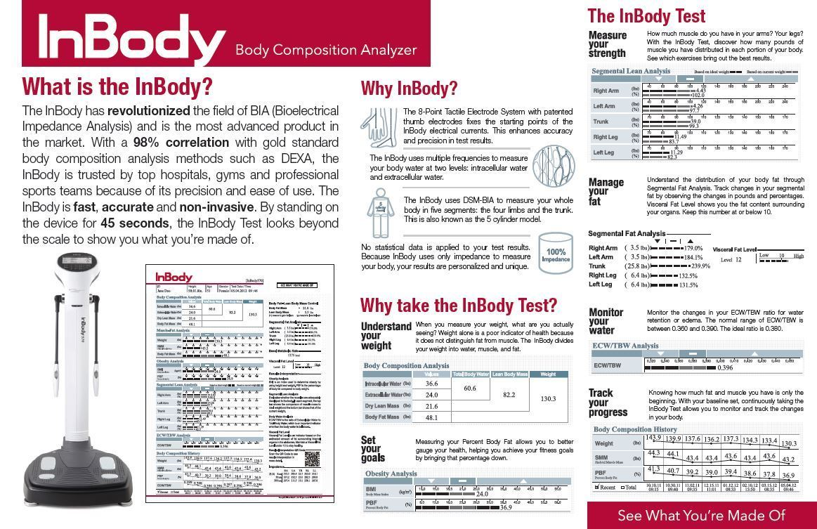 Monthly body composition Inbody  scans - Your personal trainer will analyze your results with the most accurate technology available. Getting a precise breakdown on your body's transformation for education and motivation!